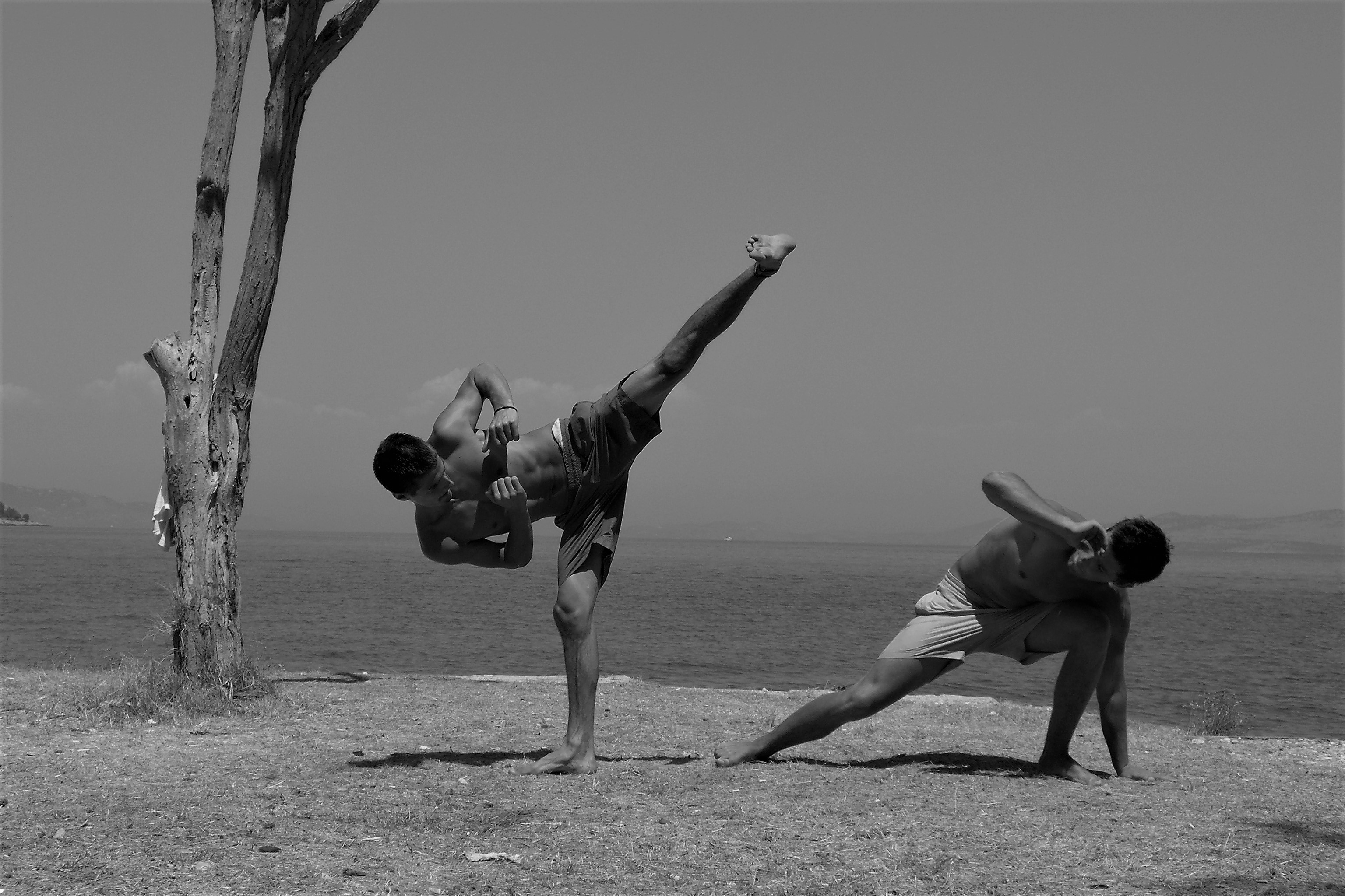 capoeira demonstration